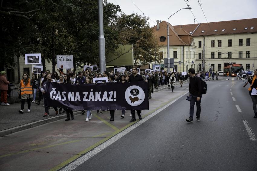 Protest za zákaz kožušinového chovu